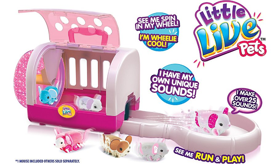 little live pets clever keet instructions