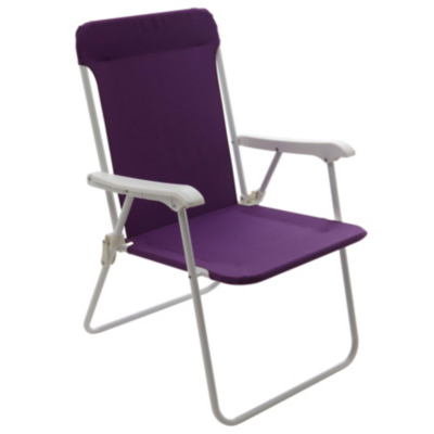 ASDA Folding Picnic Chair Purple
