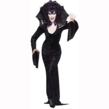 Spider Queen Halloween Fancy Dress Costume