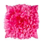 ASDA Bed Fuchsia Floral Cushion