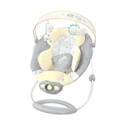 briarcliff Ingenuity Baby Bouncer,