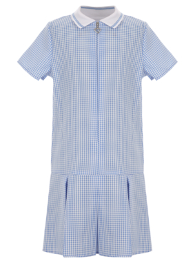 Gingham Pleated School Dress
