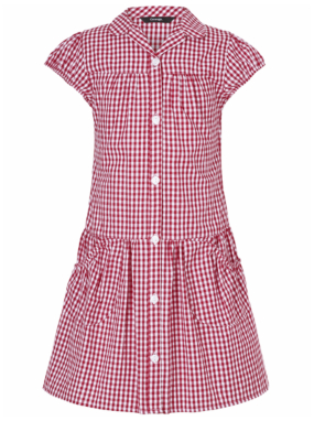 Red Gingham School Dress