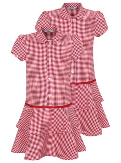 2 Pack Girls School Gingham Ra Ra Dress Red School