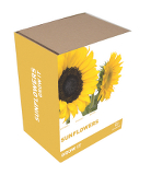 Grow It: Sunflowers