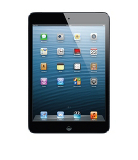 Apple iPad mini with Wi-Fi + Cellular 16GB - Black