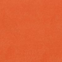 Orange Fine Velvet