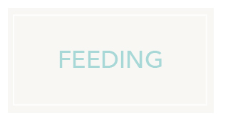 Find baby feeding essentials at George.com