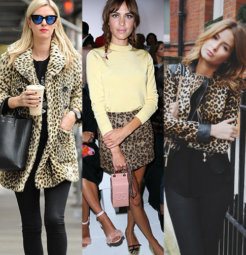 Dare to show your wild side this season with our fabulous selection of leopard print clothing at george.com
