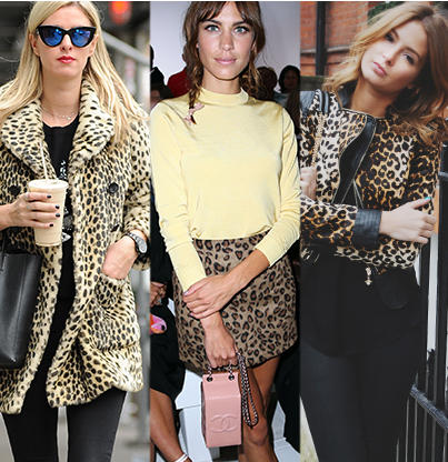 Show your WILD side with our fabulous selection of leopard print clothing at George.com