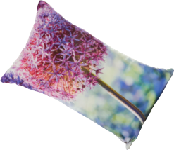 Allium cushion