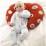 Widgery Baby Pillow