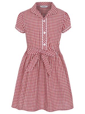 Gingham school dress plus size