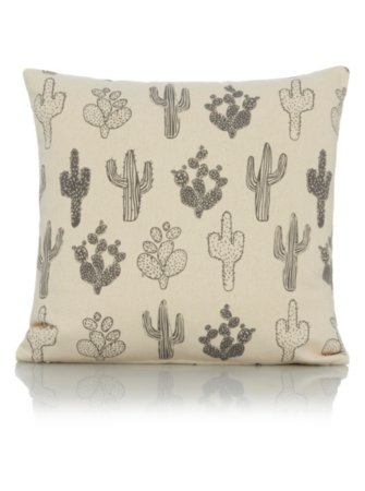 Cactus Cushion Range