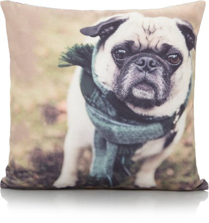 Photographic Pug Cushion & Rug Range