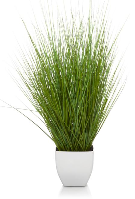 Decorative Grass Pot Home Garden George
