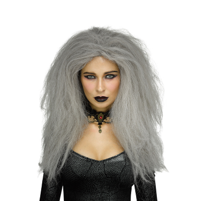 Grey Haunted Wig