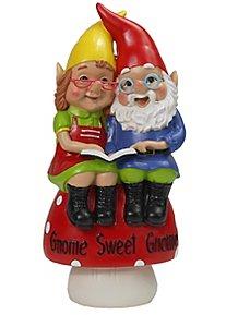 Mini Grandpa Gnomes On Mushroom