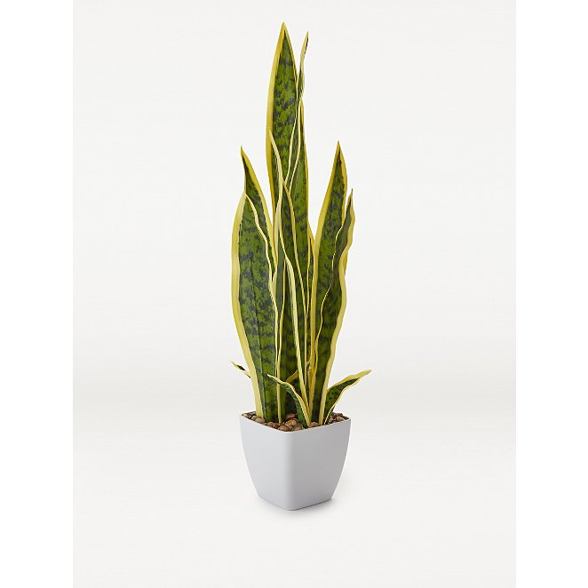 Artificial Snake Plant In Pot 60cm Home George At Asda