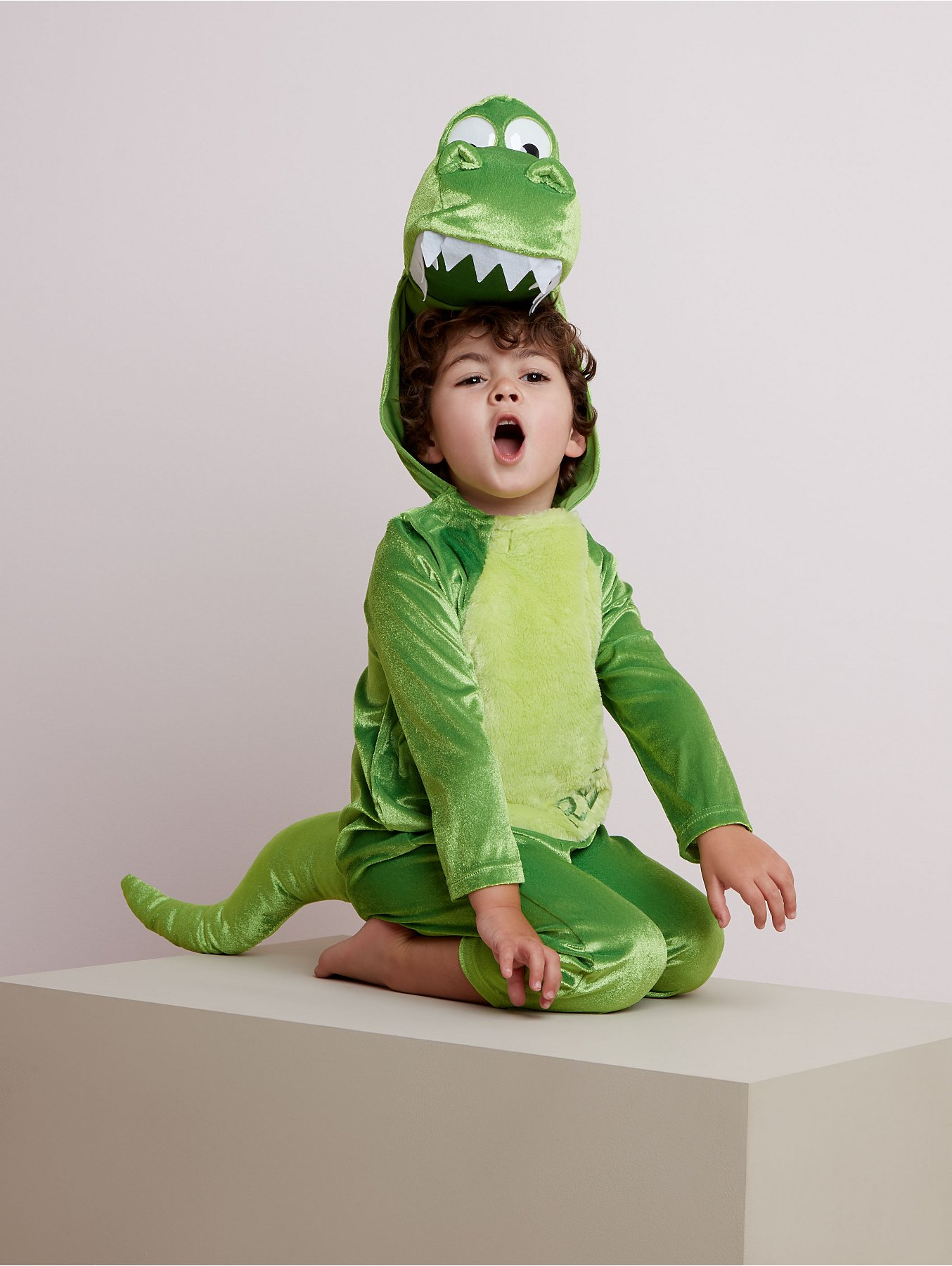 Disney Toy Story Rex Fancy Dress Costume