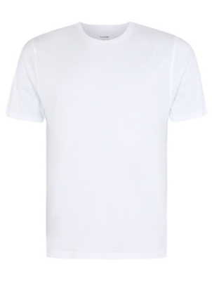 White Crew Neck Slim Fit T-Shirt