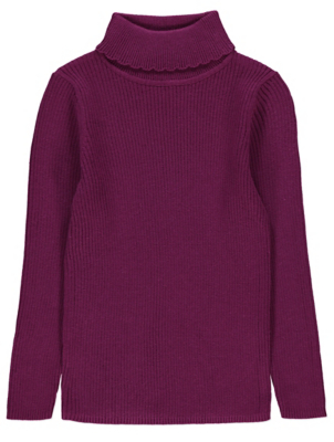 Plum Ribbed Roll Neck Long Sleeve Top