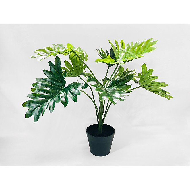 Artificial Philodendron In Black Pot 60cm Home George At Asda