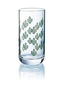 75095e224e5e Cactus Hiball Glass Set of 6