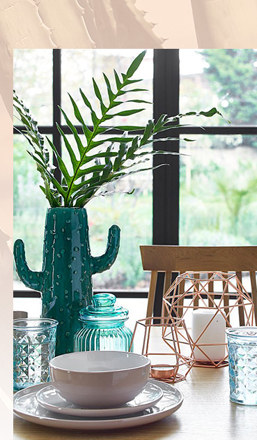 Browse our new range of cactus dinnerware