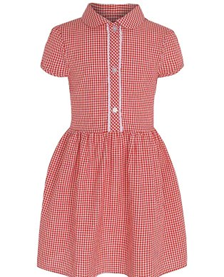 A red gingham dress