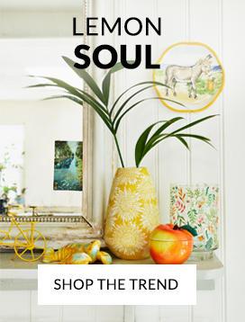 Explore Our Lemon Soul Trend