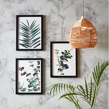 Three pictures on a wall, each of different types of leaves, and a hanging light shade