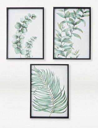 Green Plants Framed Print 3-Pack