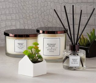 Midnight orchid triple wick candle, midnight orchid double wick candle, midnight orchid reed diffuser and artificial plant in white house pot.