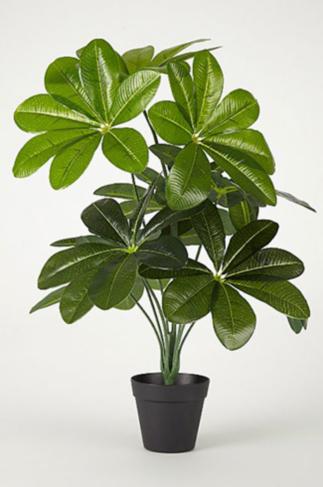 Artificial plant in black pot