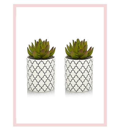 2 artificial succulents in geometric pots