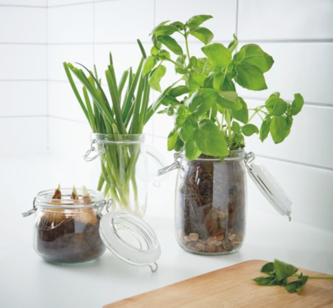 Spring Greens Glass Storage