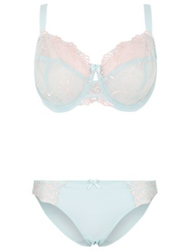 Non-Padded Embroidered Bra and High Leg Set