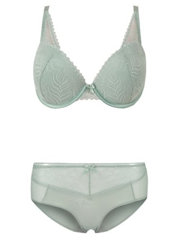 Entice DD+ Plunge Bra and Sorts Set