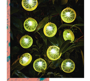 Give your garden party a summer look with this 10 pack of lemon string lights