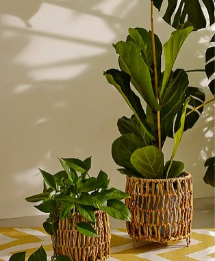 Two artificial plants on yellow and white chevron table cloth.