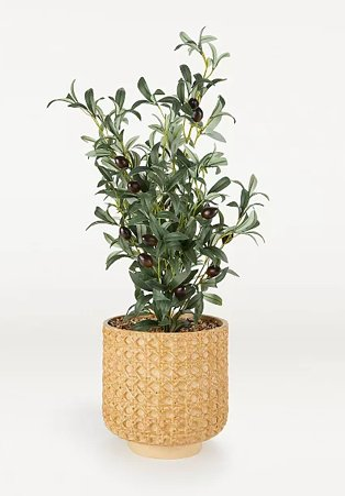 Artificial olive tree in cane-effect pot.