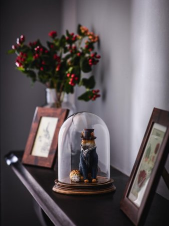 Fox in a Bell Jar