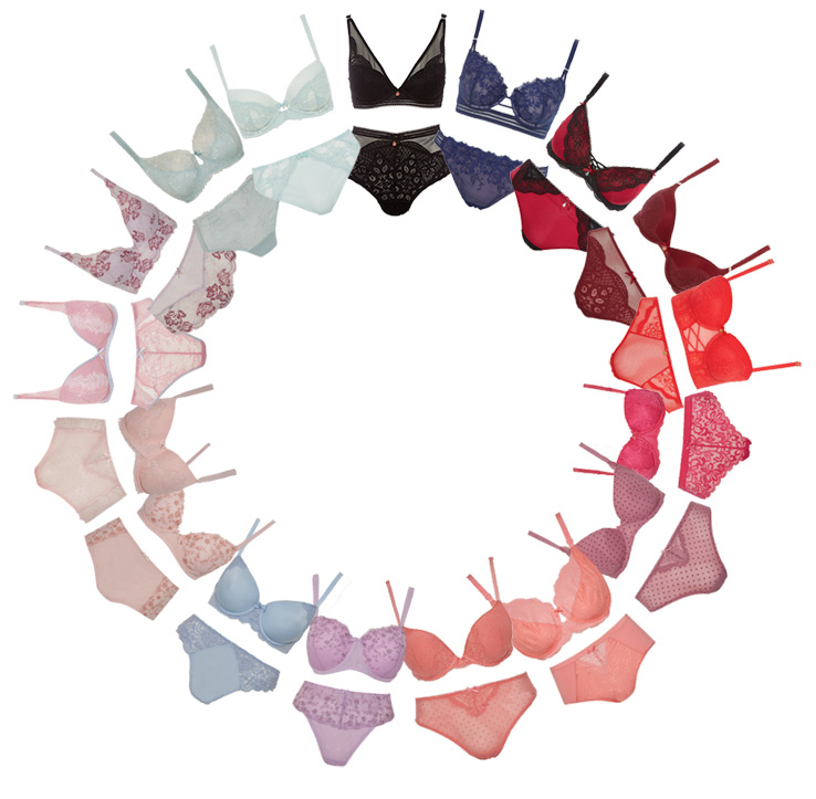 Take a look at our bra wheel to discover your perfect match