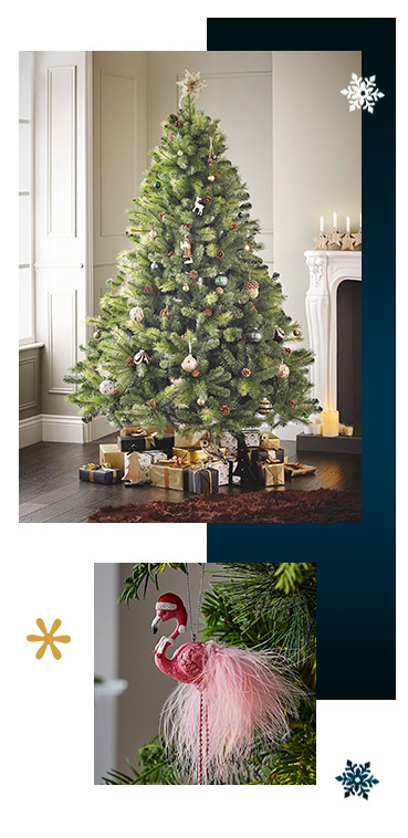 Shop our range of Christmas trees