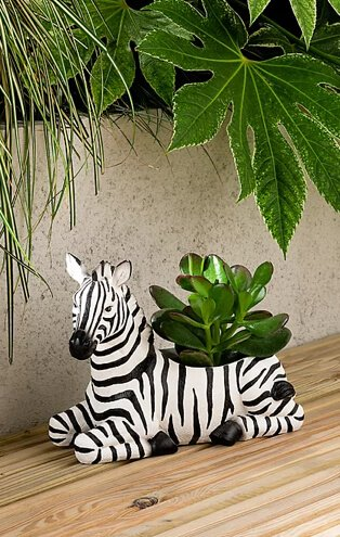 White and black zebra planter with artificial succulent.