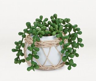 Artificial wrapped succulent in round white pot.
