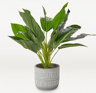 Artificial plant in grey cement pot.