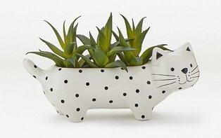 Artificial succulent in white spotty cat pot.
