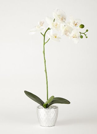 Artificial lilies in silver-tone chimney vase.
